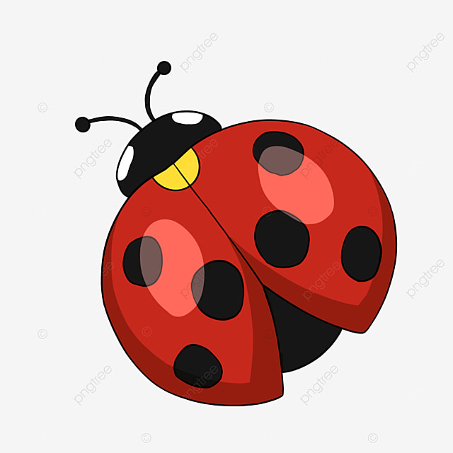 cartoon insect ladybug clipart red