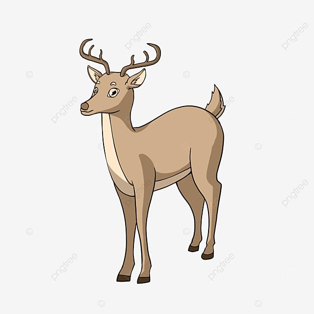 cartoon style deer clipart animal