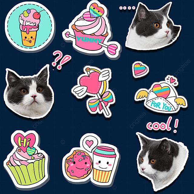 cat british short sticker