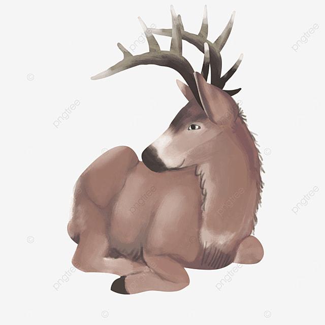 curl sitting comfortable elk clipart