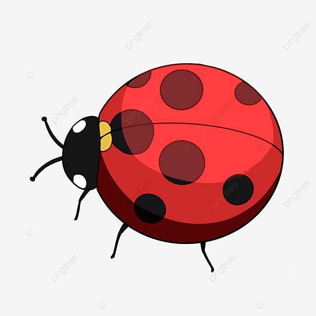 cute cartoon ladybug clipart