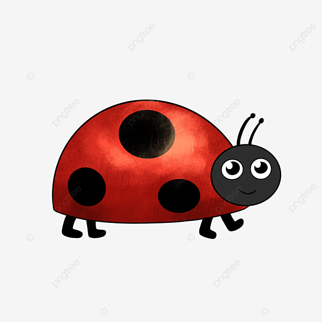 cute ladybug clipart cartoon insect
