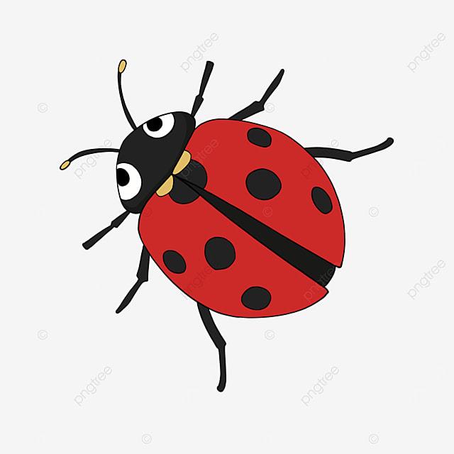 cute ladybug clipart cartoon red