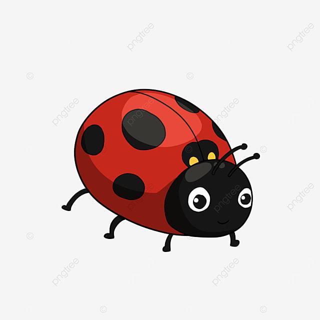 cute ladybug clipart cartoon style