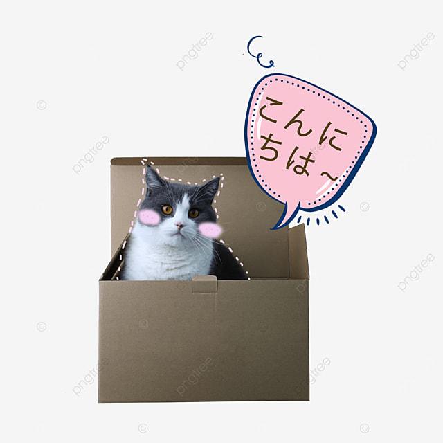 cute sticker cat emoji pack