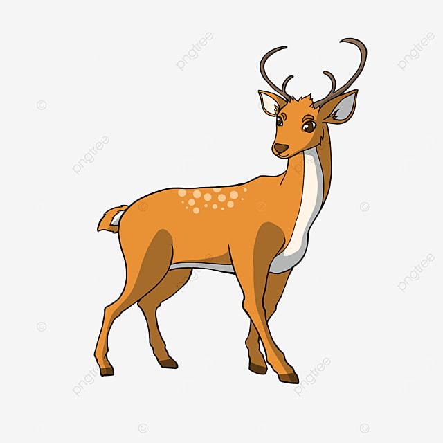 deer clipart cartoon style animal
