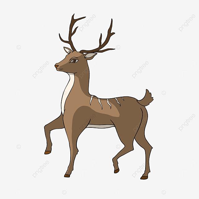 deer clipart cartoon style brown