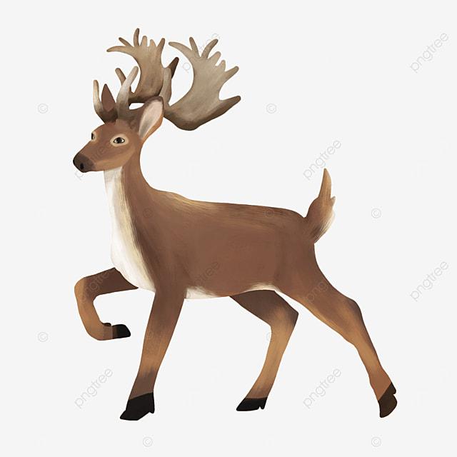 happy feet lively elk animal clipart