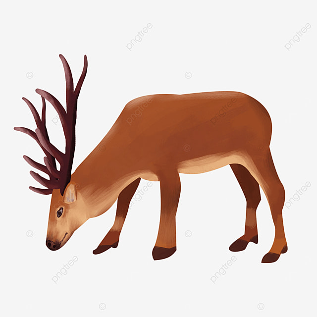 head down eating action wild animal elk clipart