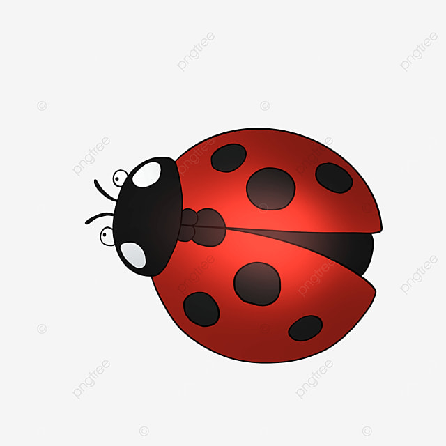 ladybug clipart cartoon style insect