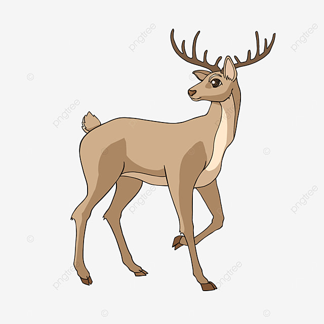 leg raising fawn clipart cartoon style