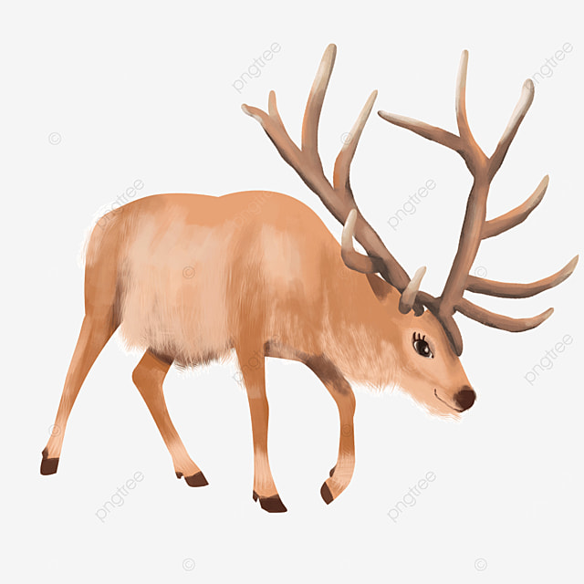 light brown elk mammal clipart