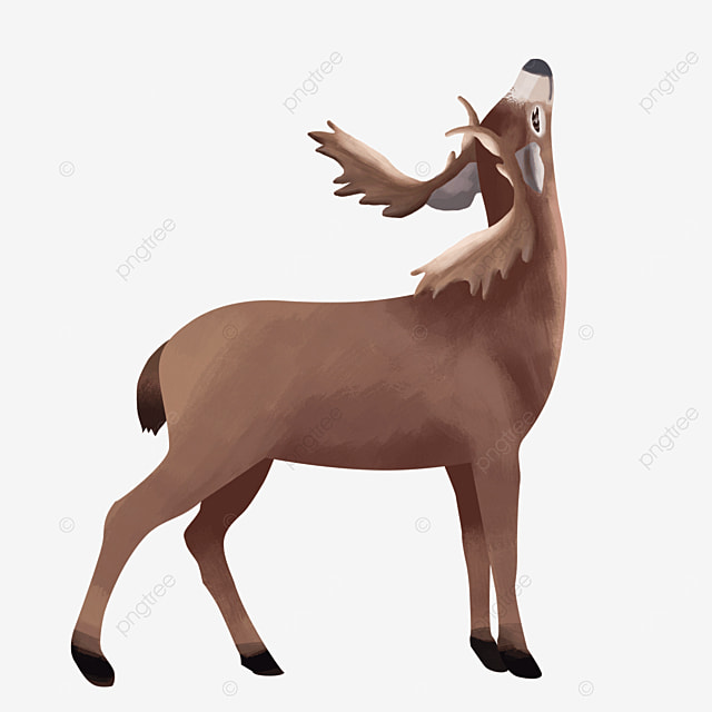 looking up standing howling wild animal elk clipart
