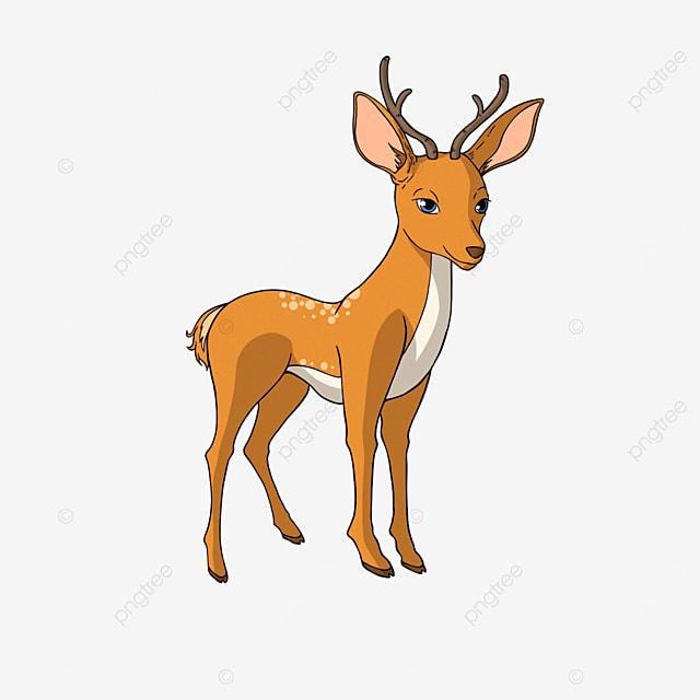sika deer clipart cartoon animal