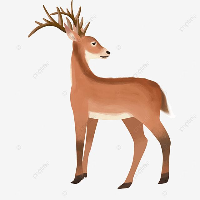 skinny light brown wild animal elk clipart