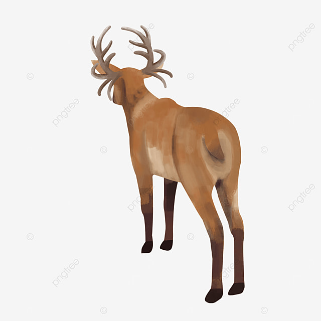 wild animal butt elk standing with back clipart