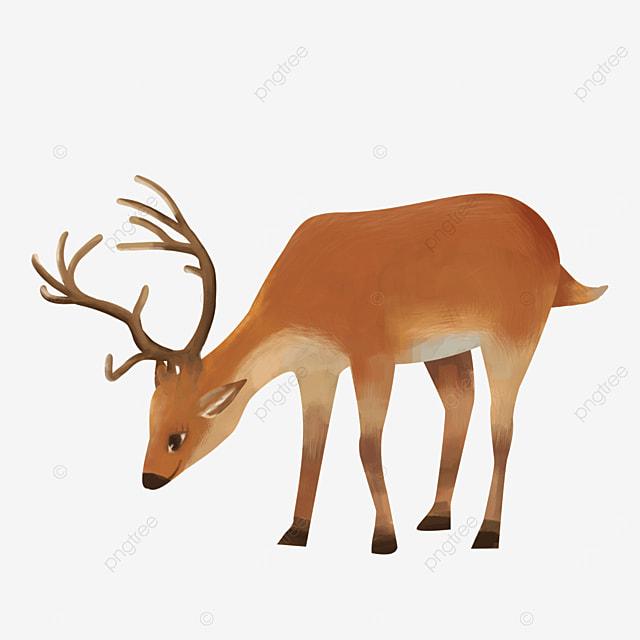 wild cute animal elk clipart
