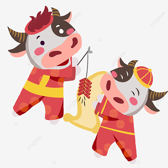 holding firecrackers and spring couplets new year spring festival ox zodiac illustration