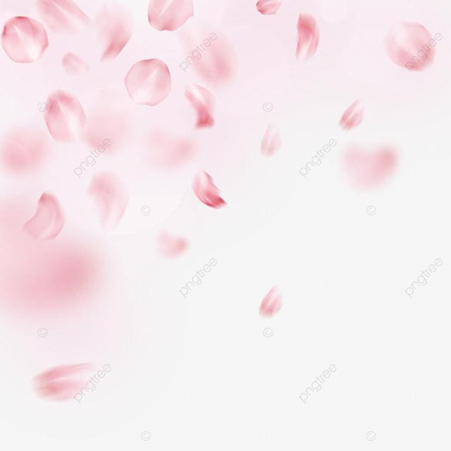 pink valentines day light effect petal border