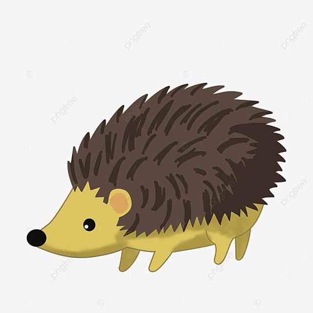 porcupine illustrator clip art