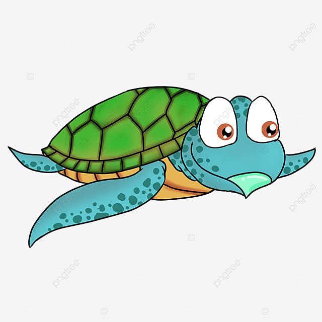 cartoon style green turtle shell blue skin sea turtle clipart