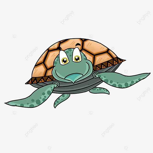 cartoon style orange yellow turtle shell ink blue color skin cute sea turtle clipart