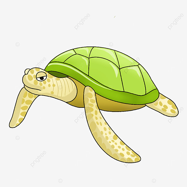 crawling turtle clipart