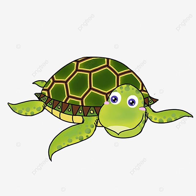 cute turtle in cartoon style green skin cyan turtle shell clipart