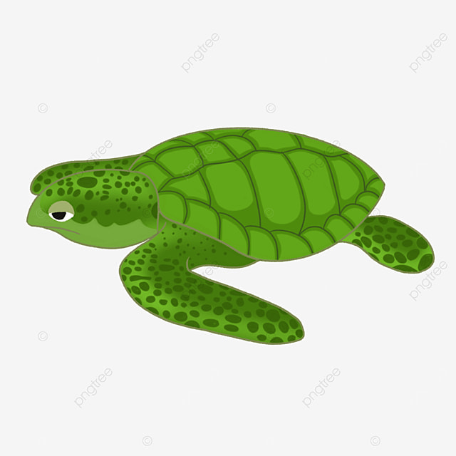 giant green turtle clipart