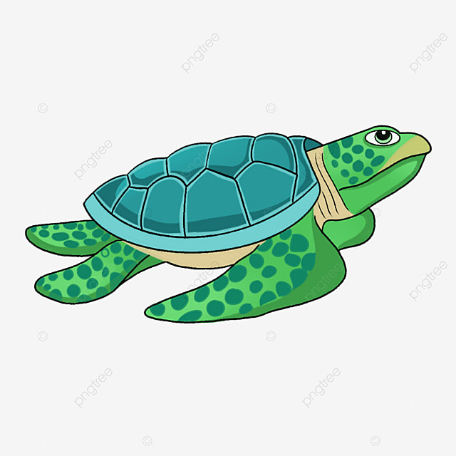 turtle looking up clipart