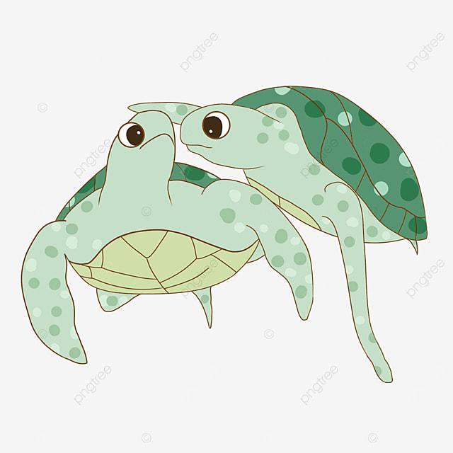 cartoon two cute turtles clipart