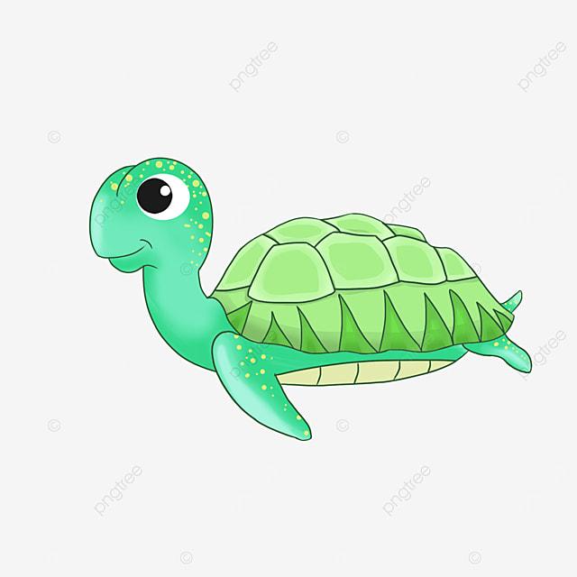 cute cartoon sea turtle clipart