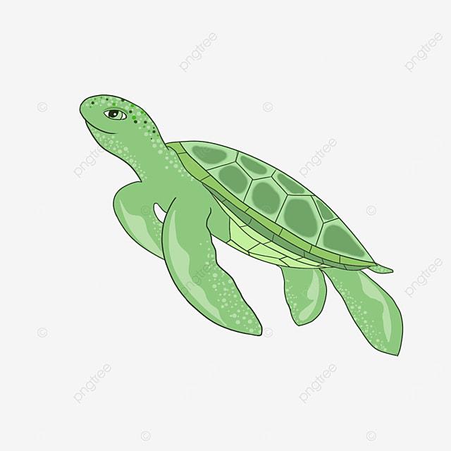 smiling cartoon sea turtle clipart