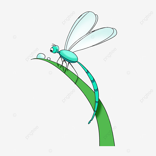 blue dragonfly observing water drops clipart