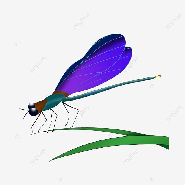 blue purple dragonfly clip art