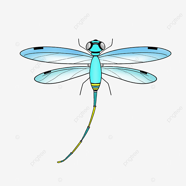 bright blue dragonfly clipart