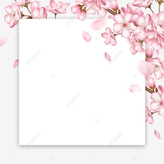 creative pink spring cherry blossom petal border