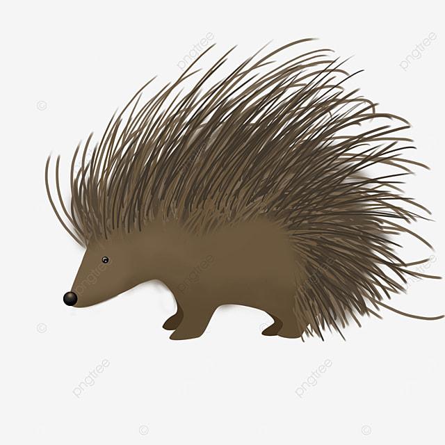 dark brown porcupine clip art
