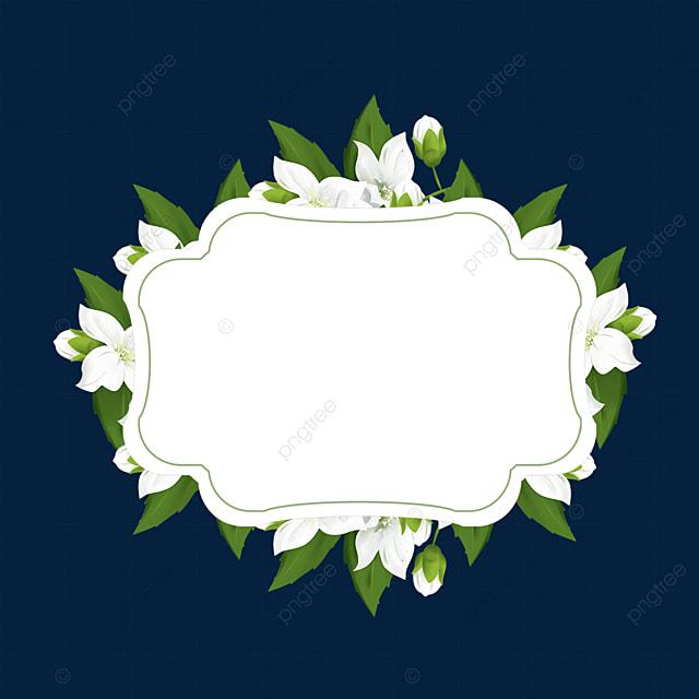 elegant jasmine flower border