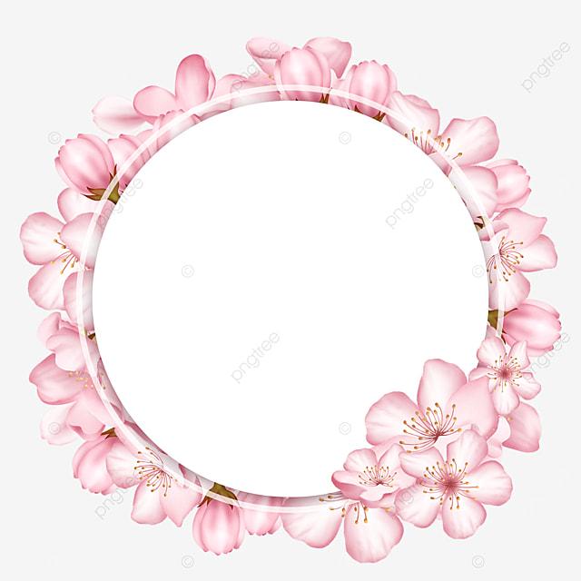 flowers round spring pink cherry blossom border