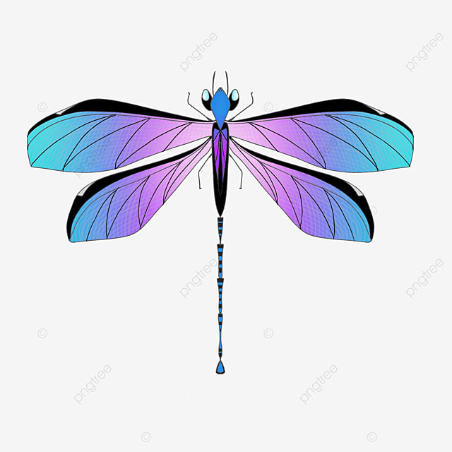 gradient colored wings dragonfly clipart