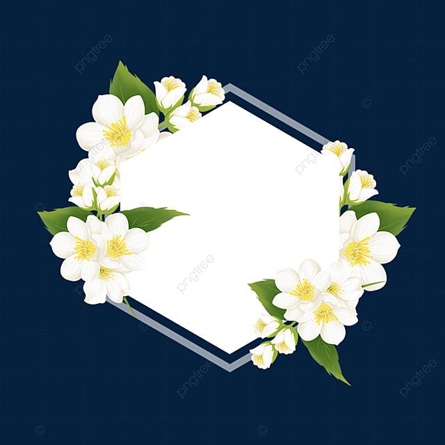 hexagon jasmine flower border