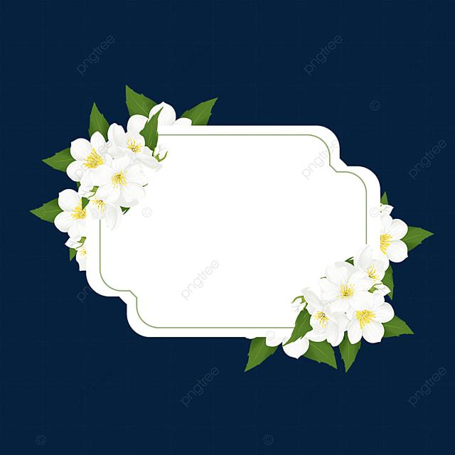 jasmine flower decorative border