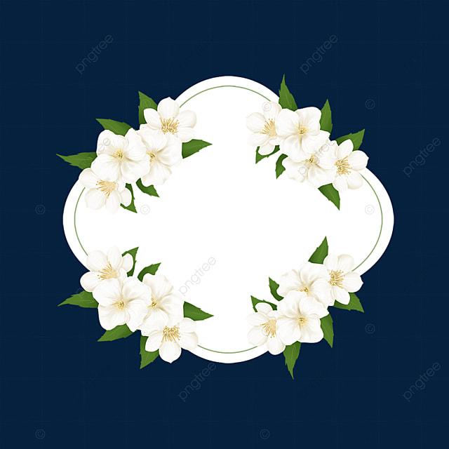 jasmine plant floral border
