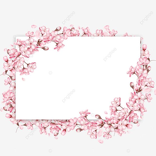 pink flowers spring cherry blossom border