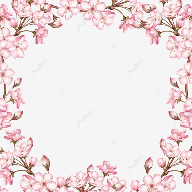 pink petals bud spring cherry blossom border