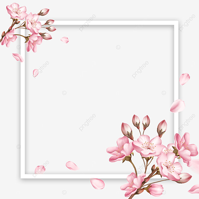pink spring cherry blossom square border