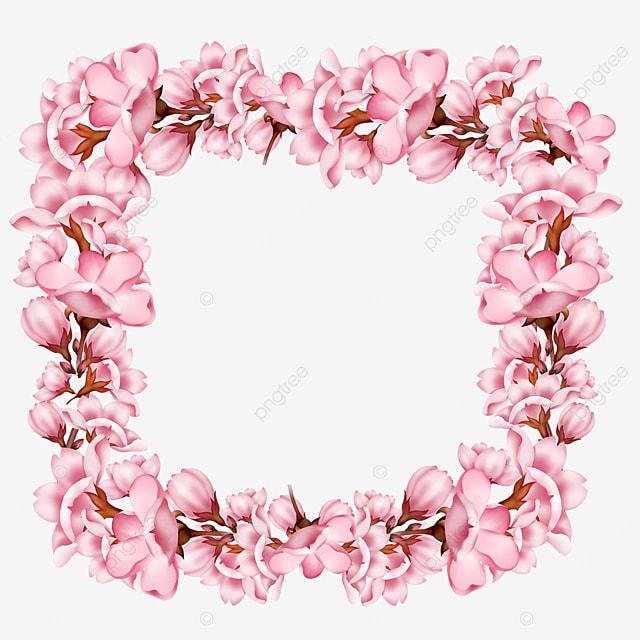 pink spring flower sakura border