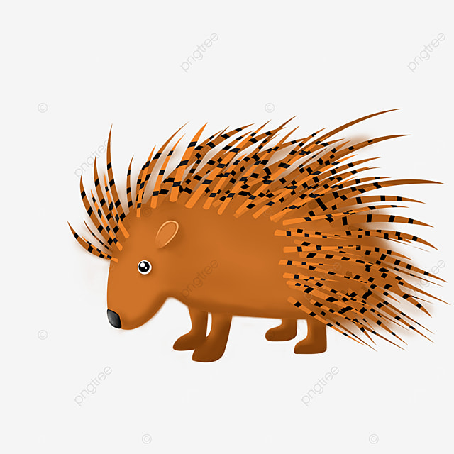 porcupine with small eyes clipart