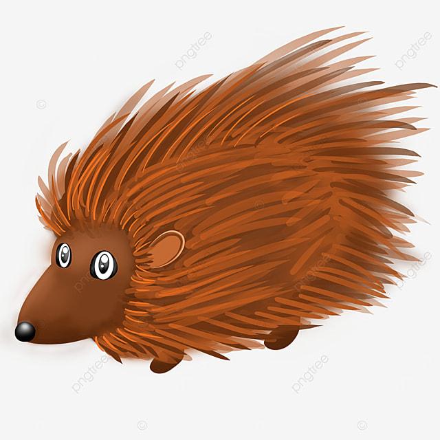short legged porcupine clip art